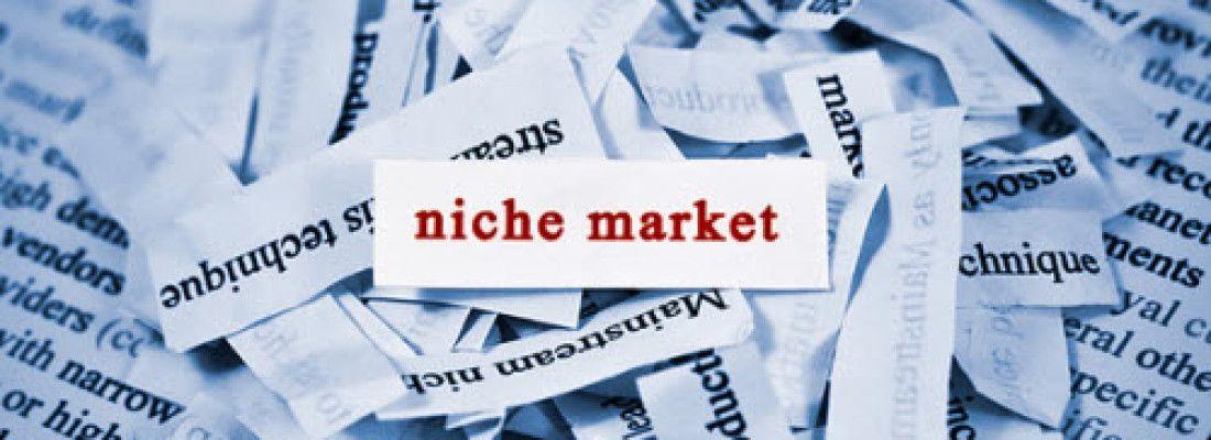 nisza rynkowa